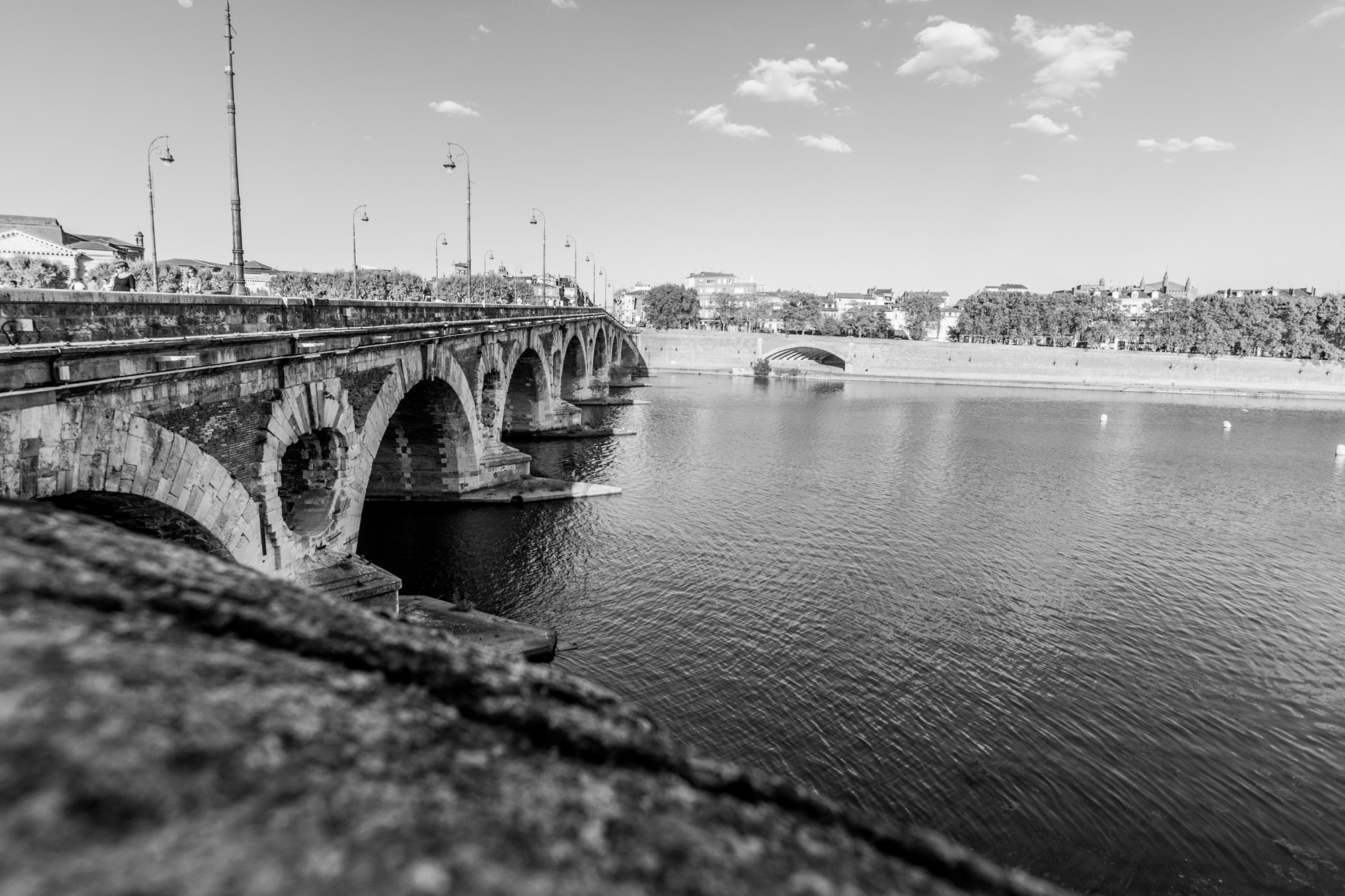 immobilier toulouse  pont neuf